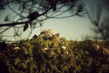 拉菲罗斯柴尔德雾禾山谷 | 葡味飘香的熊之谷